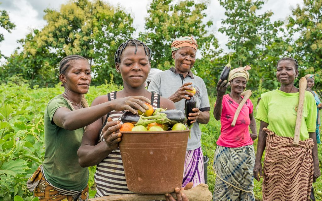 Gender equality: Essential for food and nutrition security