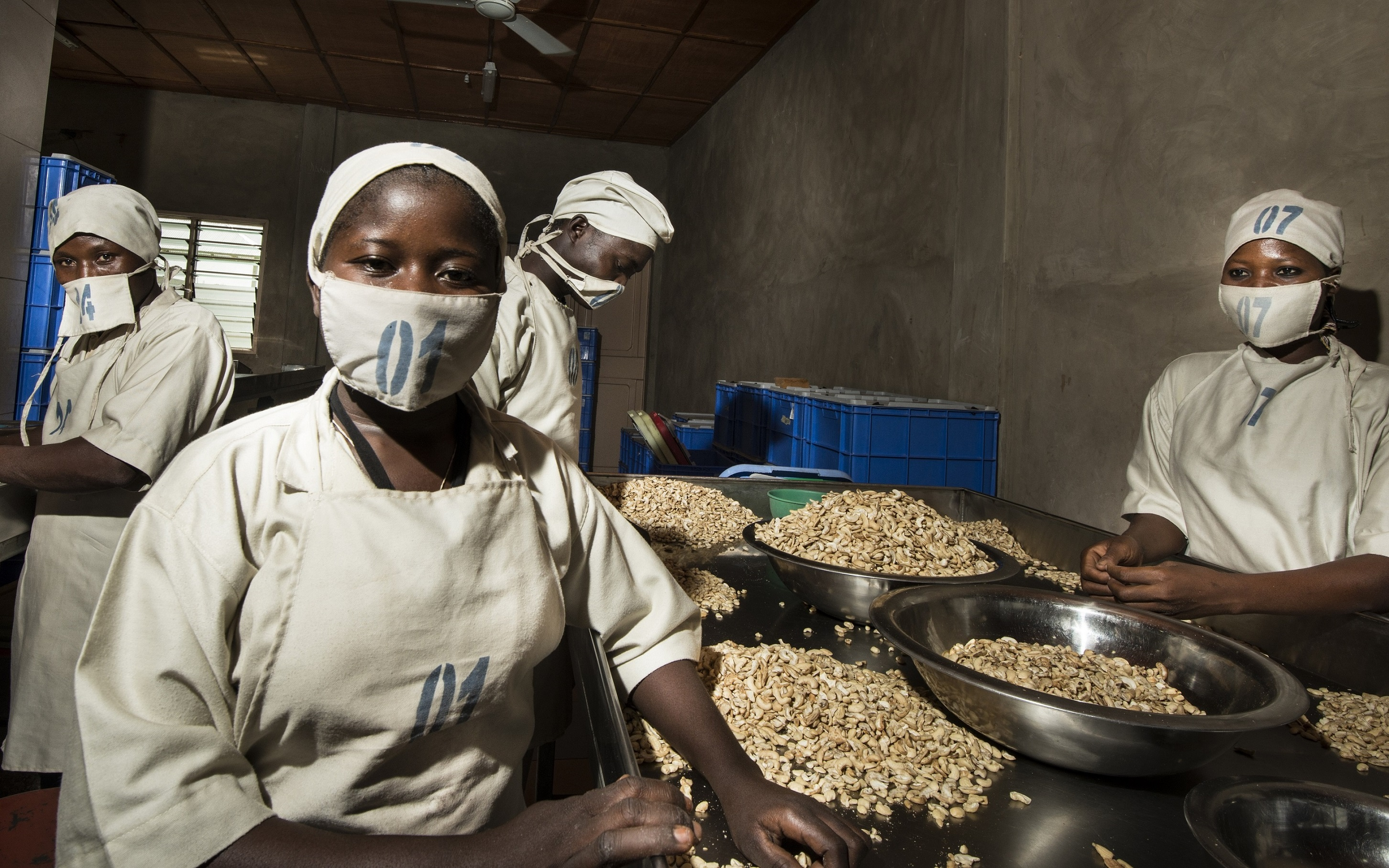 The covid-19 pandemic further highlights the vulnerability of global supply chains, such as cashew production in West Africa. © Michael Drexler, GIZ